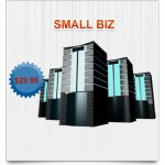 SMALLBIZ HOSTING PACKAGE