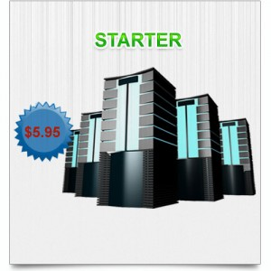 STARTER HOSTING PACKAGE
