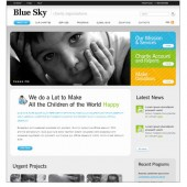 BLUE SKY CHARITY CO.