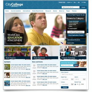 THE CITY COLLEGE / UNIVERSITY.