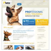 PROFESSIONAL DOG TRAINING CO.